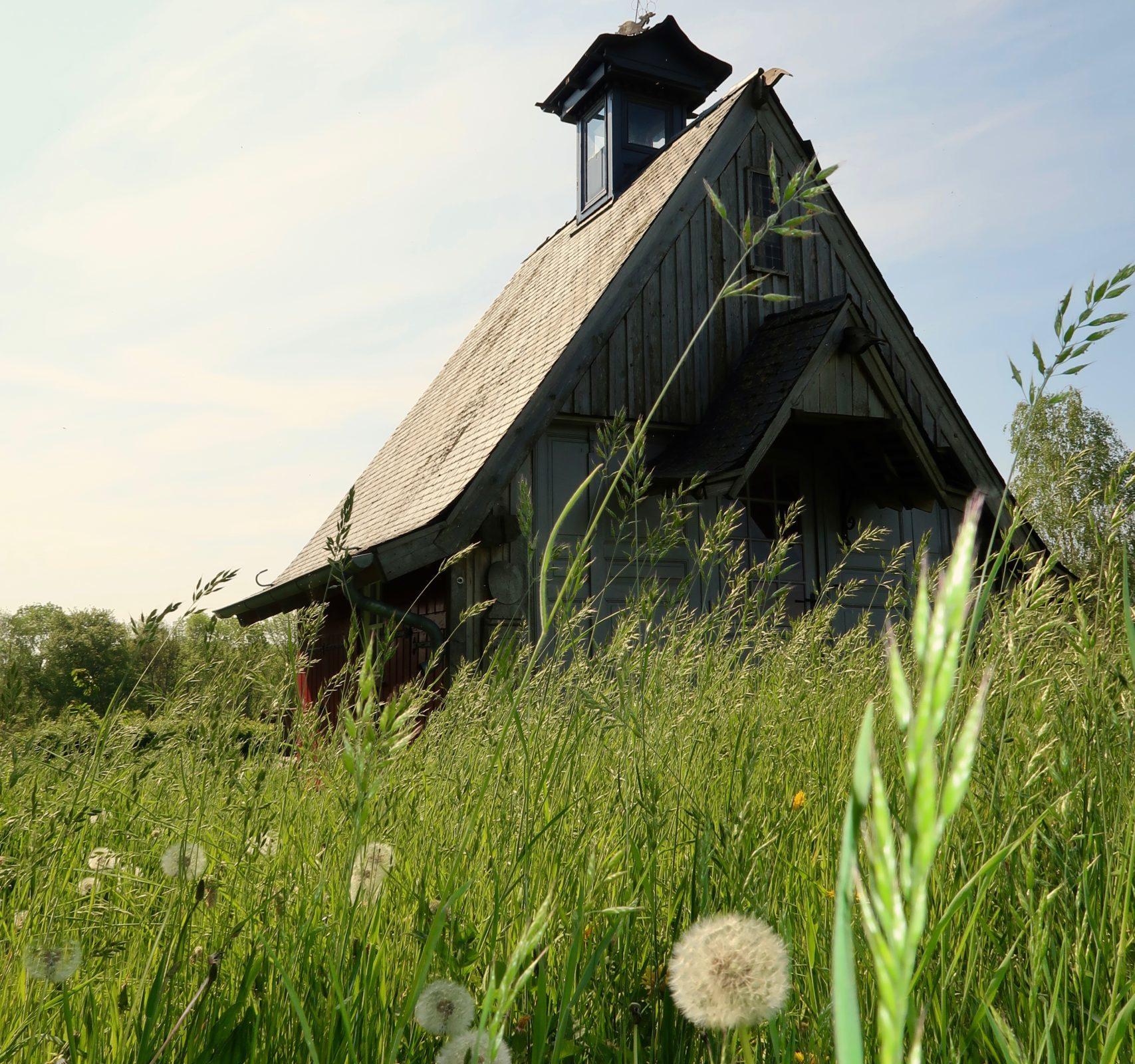 Cabane Grass